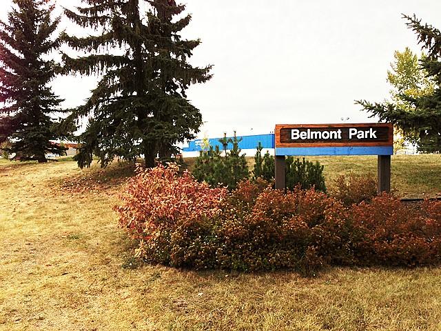 Photo of Belmont