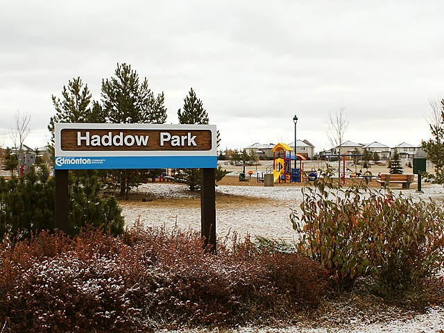 Photo of Haddow