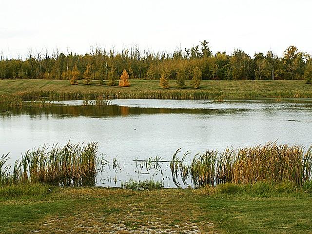 Photo of Baranow
