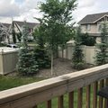 Photo 19 of #1 2005 70 St SW