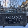Photo 1 of #330 10121 80 Ave NW
